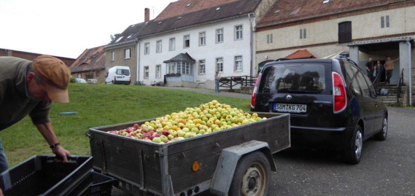Äpfel, Äpfel, Apfelsaft!