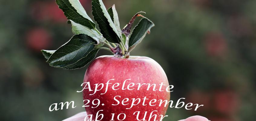 Einladung Apfelernte 2018